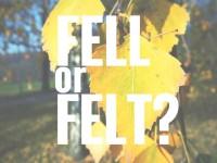Fell or felt?